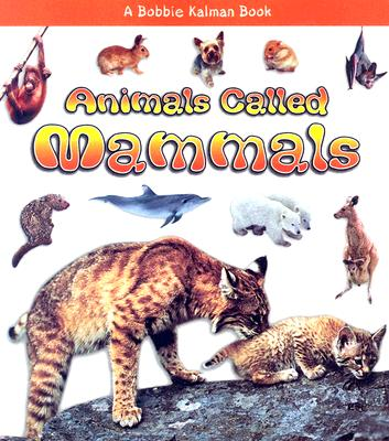 Animals Called Mammals By Kalman, Bobbie/ Lundblad, Kristina